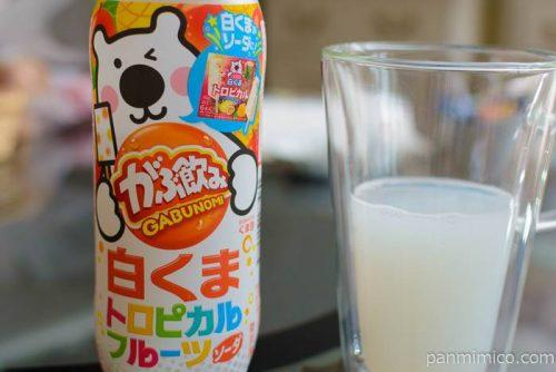 ポッカサッポロがぶ飲み白くまトロピカルフルーツソーダ