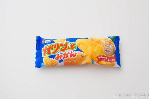 ガツン、と みかん(棒)【赤城乳業】